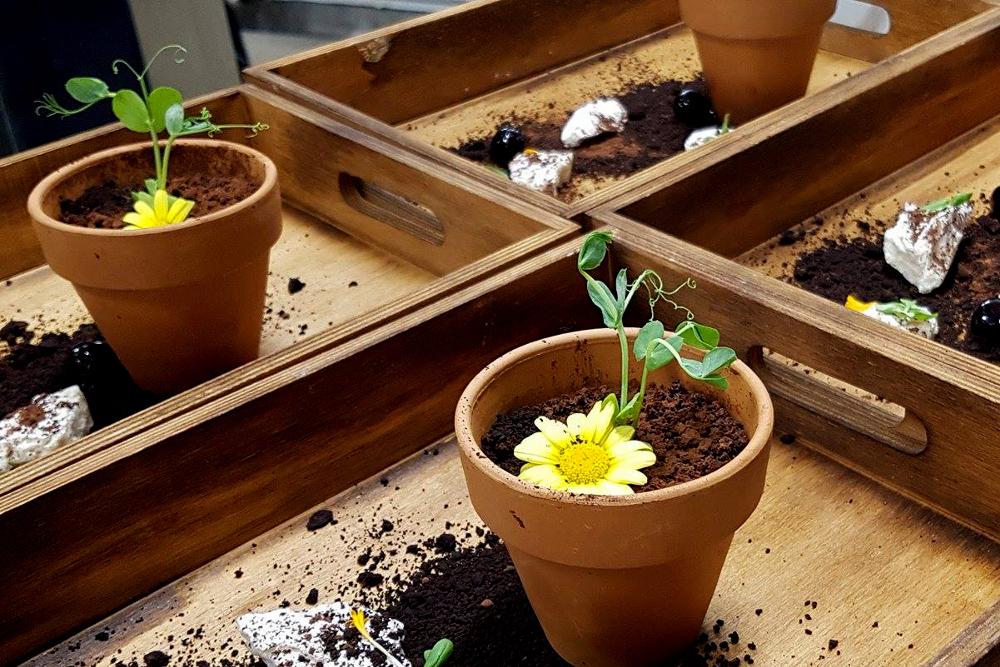 NEA HOTEL FOOD המסעדה של מלון ניאה עציץ